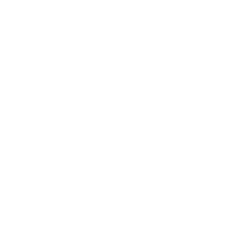 Salon Noir